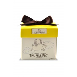 Everyday Truffle Pig Chocolate Mini Box-Assorted